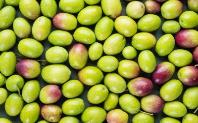 Cuisiner à l'huile d'olive : les bienfaits