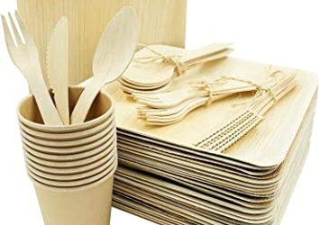Pourquoi choisir l'alternative de la vaisselle jetable en carton ?